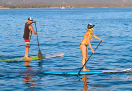 Picture of Paddleboard